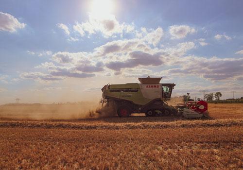 Ernte im Landwirtschaftsbetrieb Landhandel Ackermann